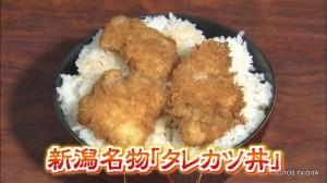 20150709タレカツ丼